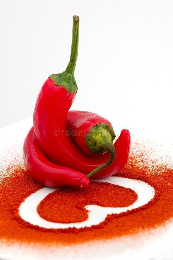 chili горячий стоковое фото