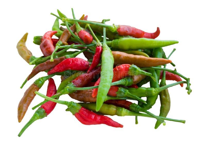 Chili цвета Isoalted тайский множественный стоковое фото rf
