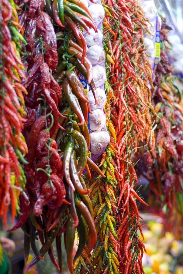 chili royaltyfri bild