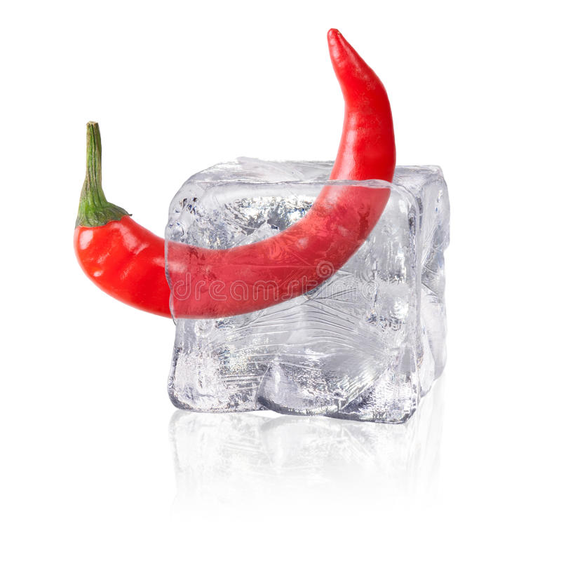 Chili in an ice cube stock photography