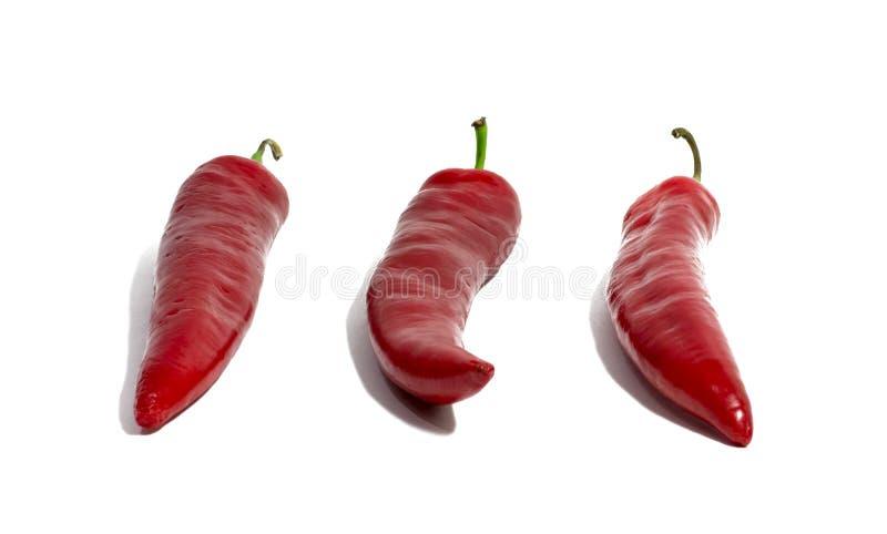 chili isolerad röd white för peppar mat objekt fotografering för bildbyråer