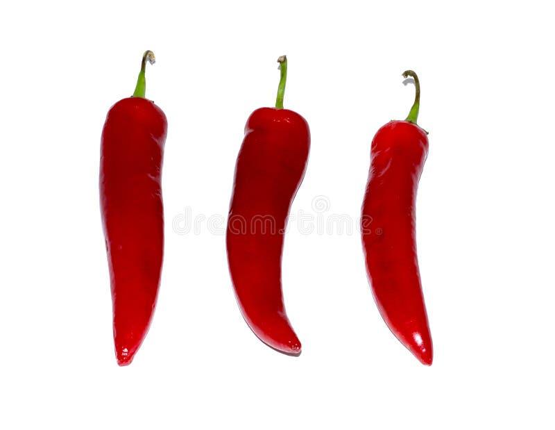 chili isolerad röd white för peppar mat objekt royaltyfri fotografi