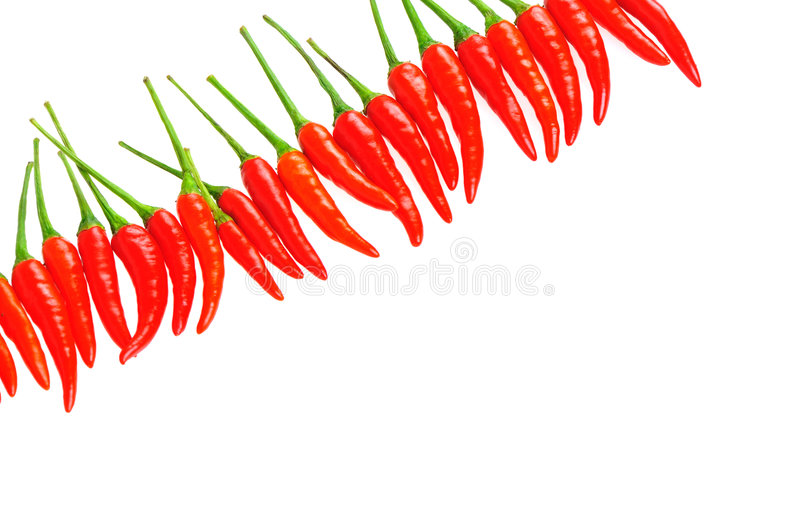Chili in a line royalty free stock images