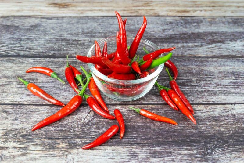 Chili - pepparväxterna till naturen av sfären arkivfoton