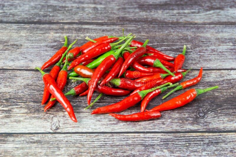 Chili - pepparv?xterna till naturen av sf?ren arkivbild