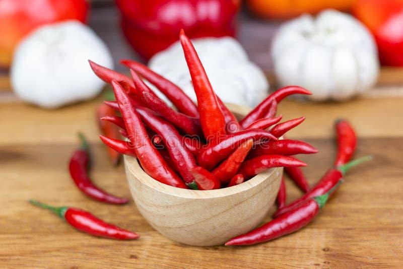 Chili - pepparv?xterna till naturen av sf?ren arkivfoton