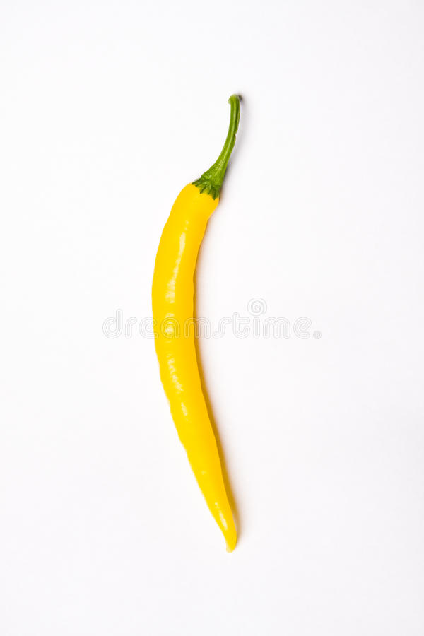 Download Chili pepper stock photo. Image of ingredient, isolated - 13260598