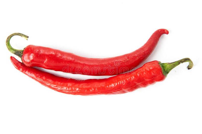 Chili Pepper imagem de stock royalty free