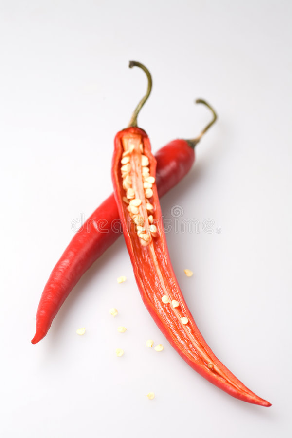 Chili Pepper. With peppercorn, soft royalty free stock photos