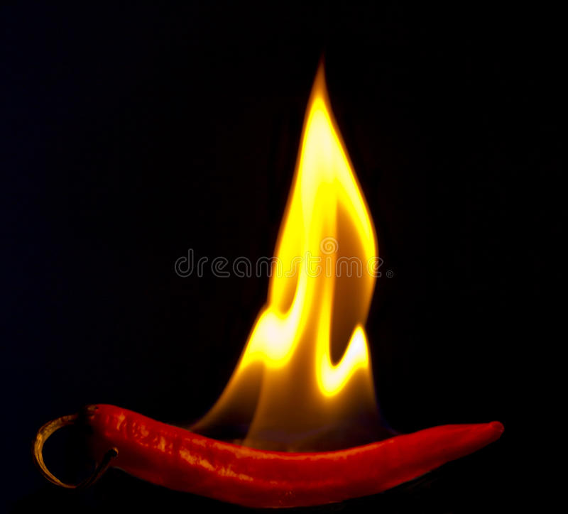 Chili Pepper chaud ardent images stock