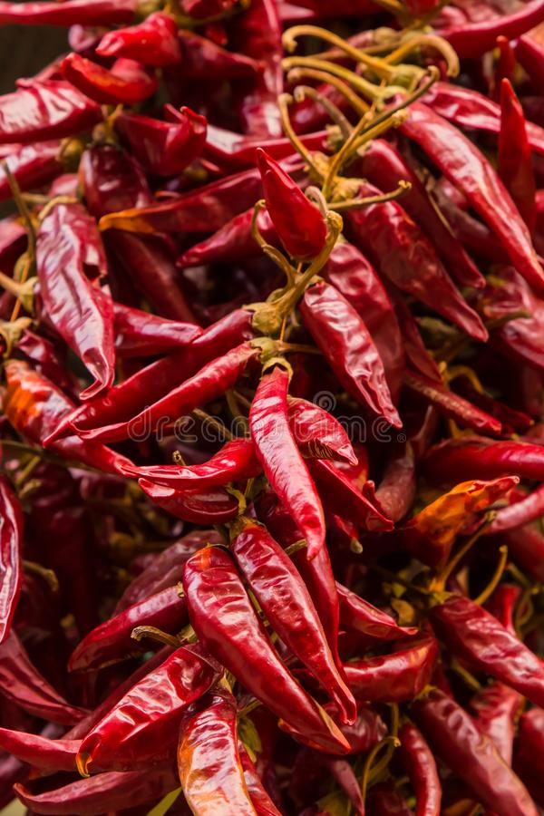 Chili pepper dried whole fruit spicy seasoning row of many pods base design culinary base of dishes asia royalty free stock photography