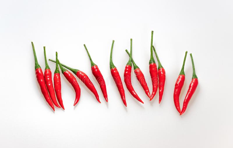 Chili Pepper On White Background rovente Fila orizzontale dei peperoncini, vista superiore Peperoni maturi rossi con i gambi verd immagine stock