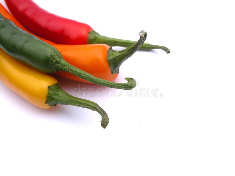 Chili Peppers. Hot colors royalty free stock photography