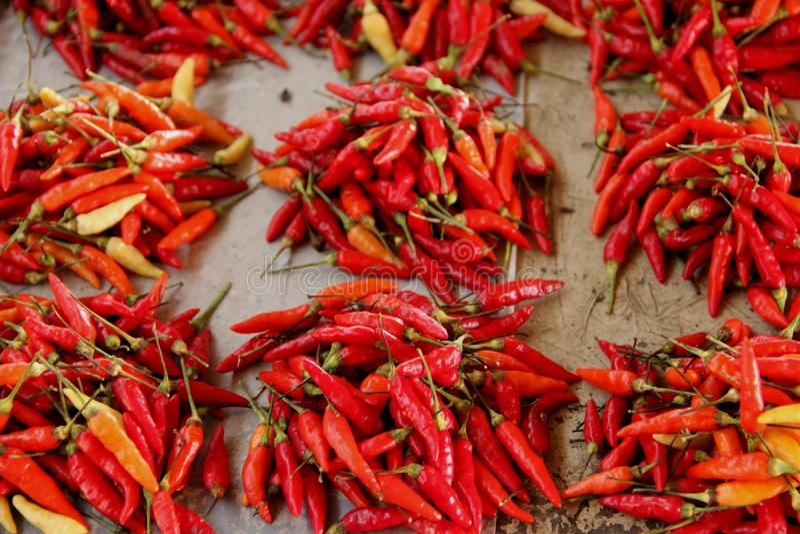 Chili Peppers fotografia de stock
