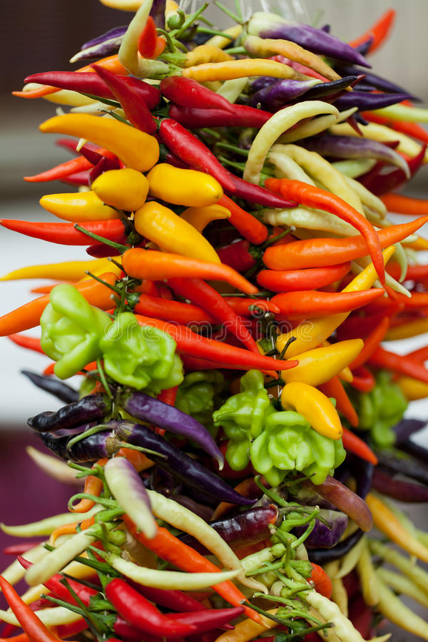 Chili Peppers chaud photographie stock