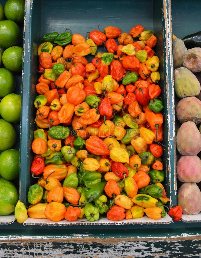 Chili peppers at mexican market royalty free stock images