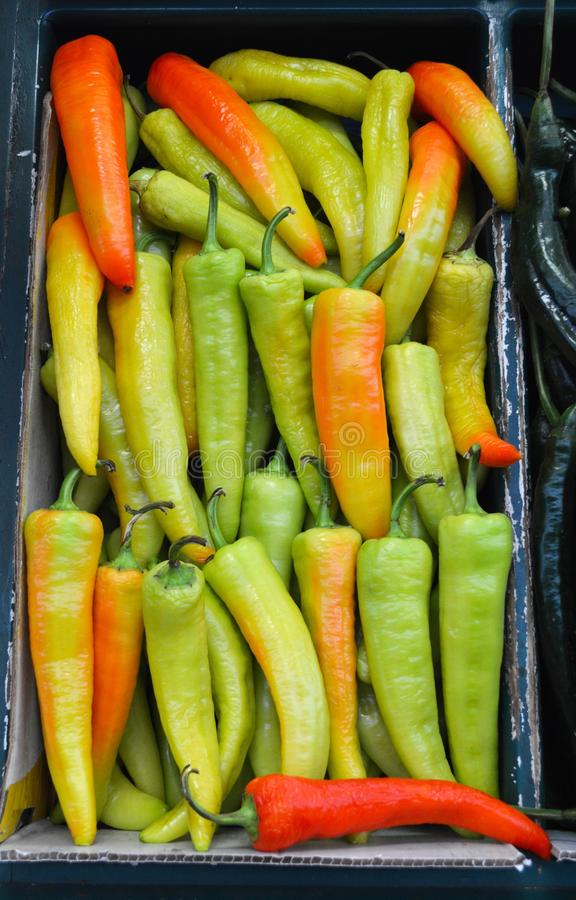 Chili peppers at mexican market royalty free stock photo