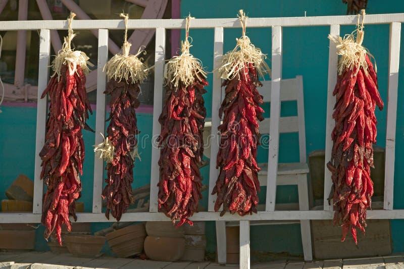 Chili Peppers på Mescalero Apache indisk reservation nära Ruidoso och alten som är nya - Mexiko arkivfoton