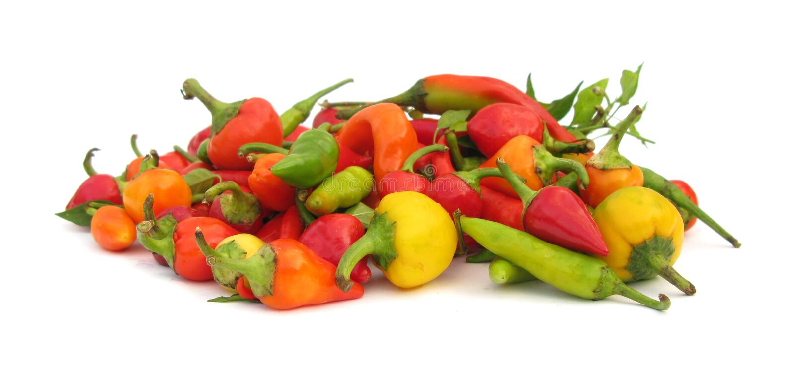 Chili peppers paprika royalty free stock photos
