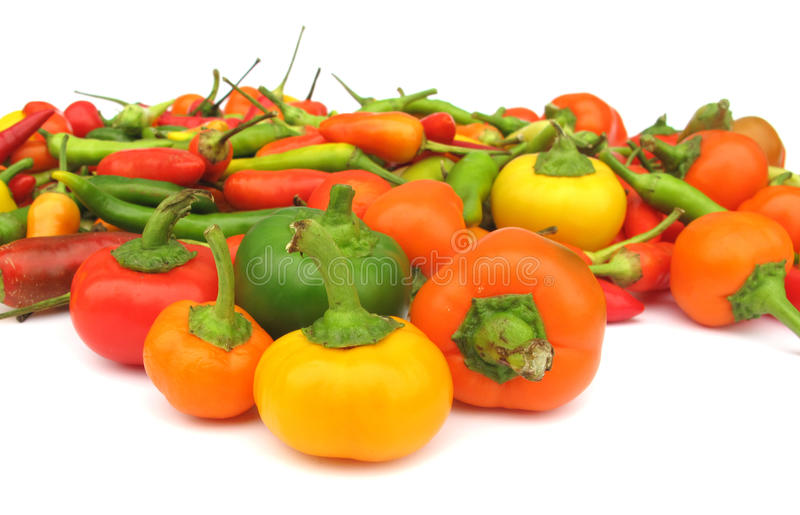 Download Chili Peppers Paprika Royalty Free Stock Images - Image: 10775919