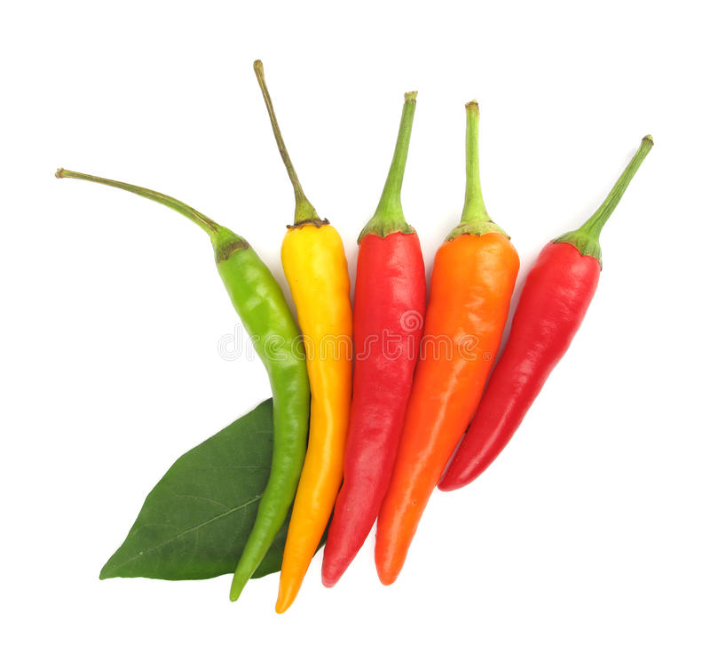 Download Chili peppers paprika stock photo. Image of studio, nobody - 10776586