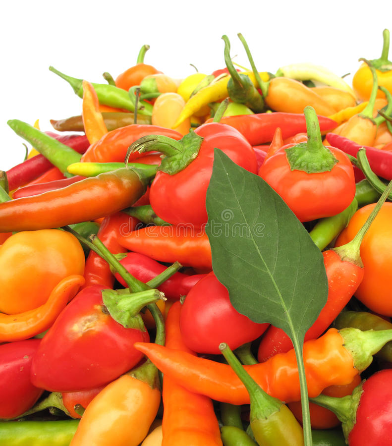 Download Chili Peppers Paprika Full Frame Stock Photo - Image of chilli, orange: 10775870