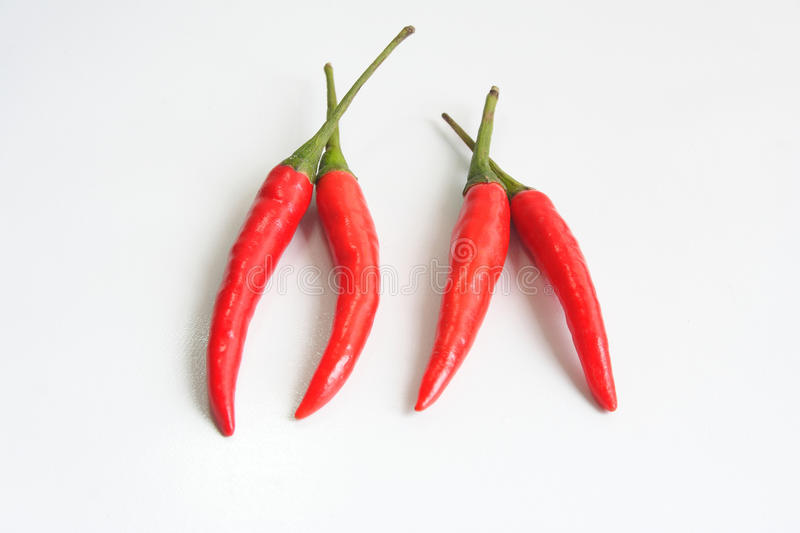 Chili peppers. Red chili peppers, fresh spice royalty free stock photos
