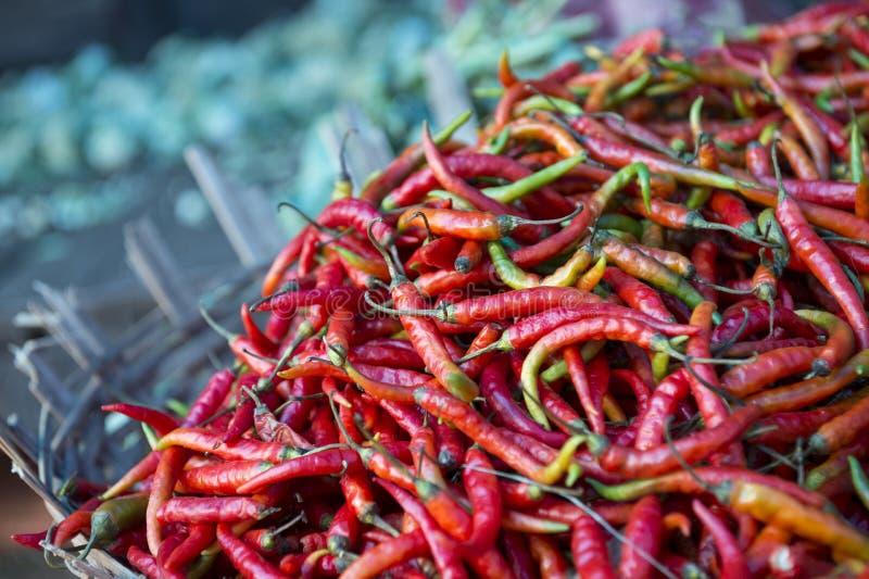 Chili Peppers rouge frais sur l'affichage au marché d'agriculteurs photo libre de droits