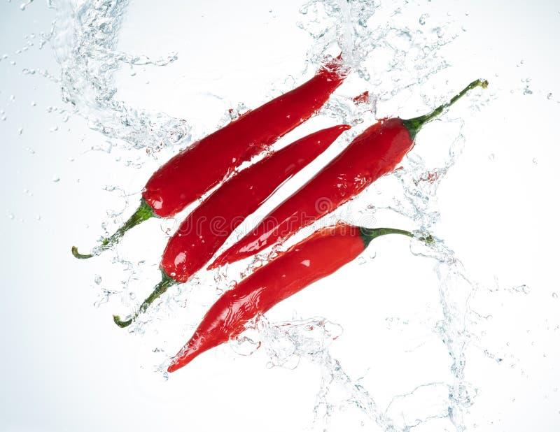 Chili Peppers Water Splash image libre de droits