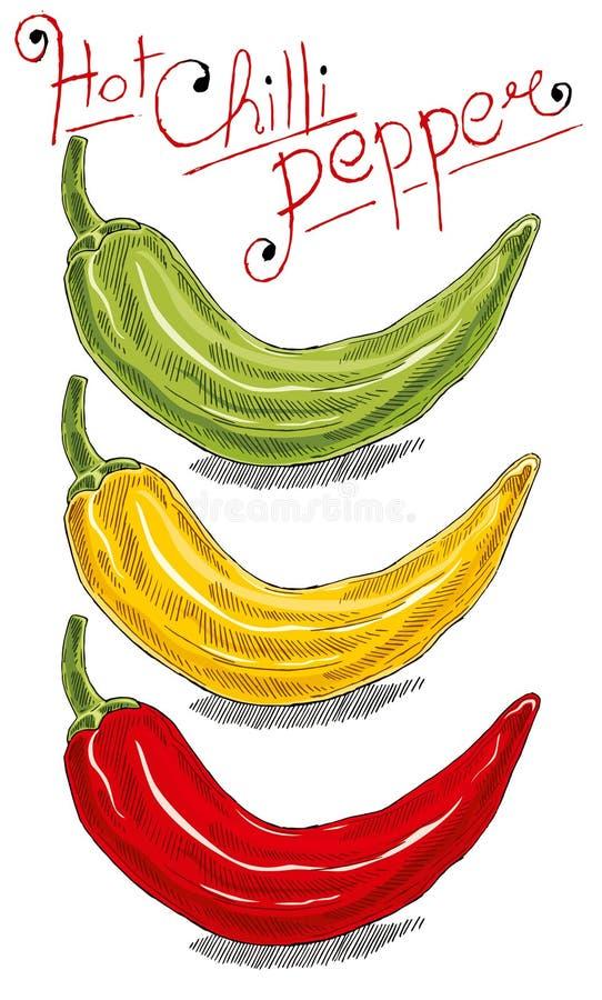 Chili pieprz royalty ilustracja