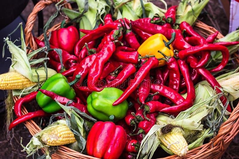 Chili pieprz Kolorowa mieszanka świeżego i gorącego chili pieprze Red Hot Chili Peppers w drewnianym koszu z kukurudzy yello i zi zdjęcia royalty free