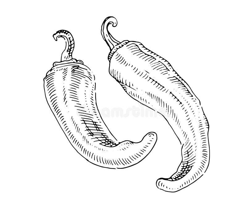 Chili pieprze i palenie, Gorący ilustracji
