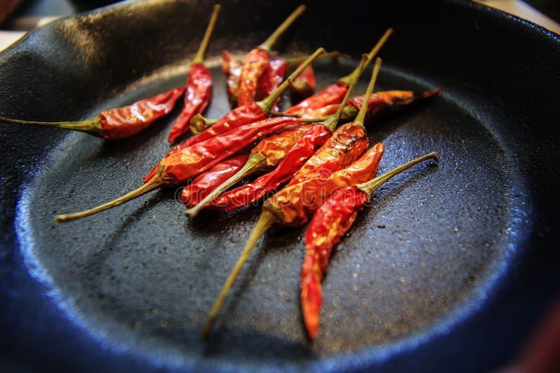 Chili pieprzu rośliny natura sfera dłudzy kolce blada czerwień obraz royalty free