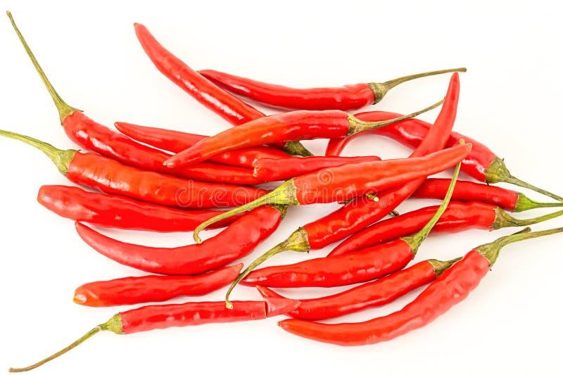 Chili pieprzy czerwoni strąki z zielonymi ogonów rozcięciami na białym odosobnionym tle projektują jaskrawego zdjęcia royalty free