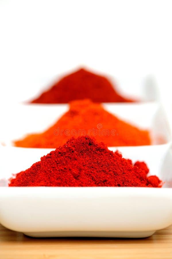 Chili Powder royalty free stock images