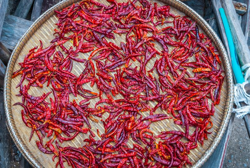 Chili som torkar yttersidan arkivfoto
