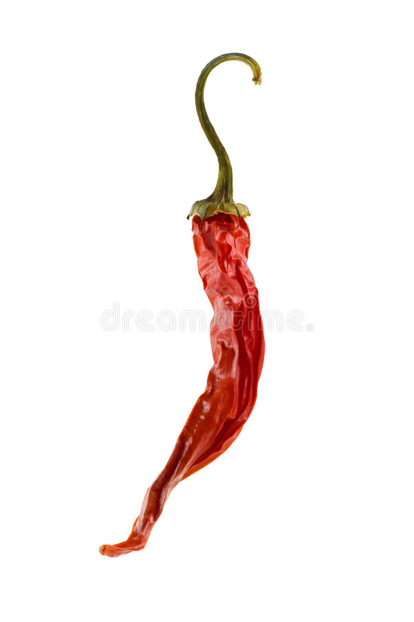 chili torkad varm pepparred arkivbild