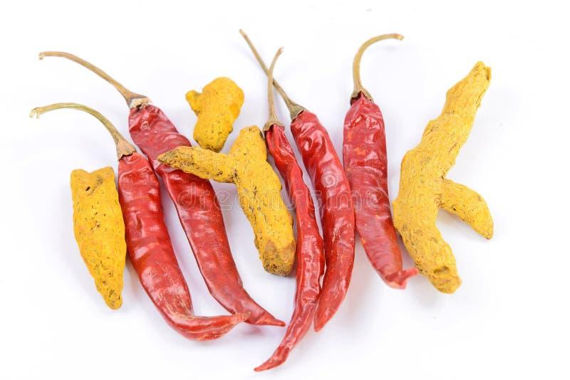 Chili & Turmeric obraz stock