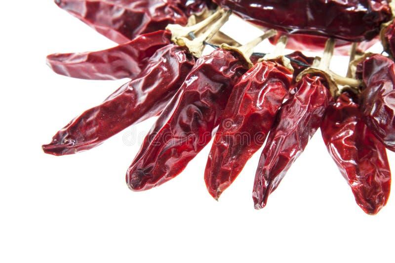 Chili wysuszeni pieprze obraz stock