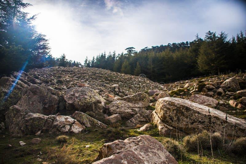 chiliaaouras een batna Algerije royalty-vrije stock foto
