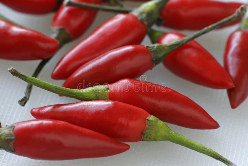Chilies Стоковая Фотография