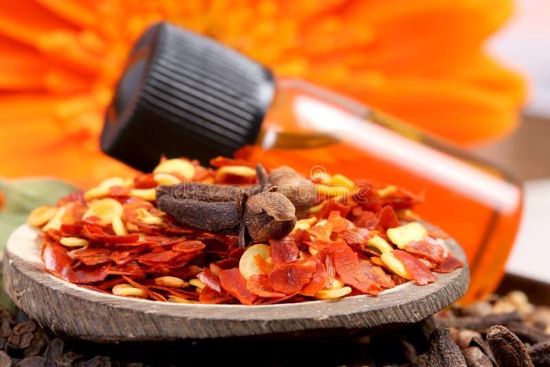 Chiliflingor och kryddnejlika royaltyfri bild