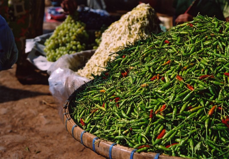 chilis πράσινα στοκ φωτογραφία με δικαίωμα ελεύθερης χρήσης