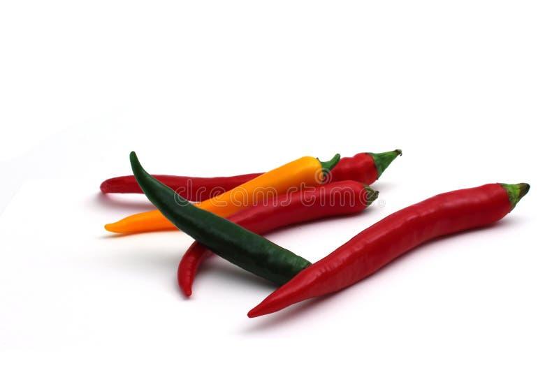 Chilis stock foto