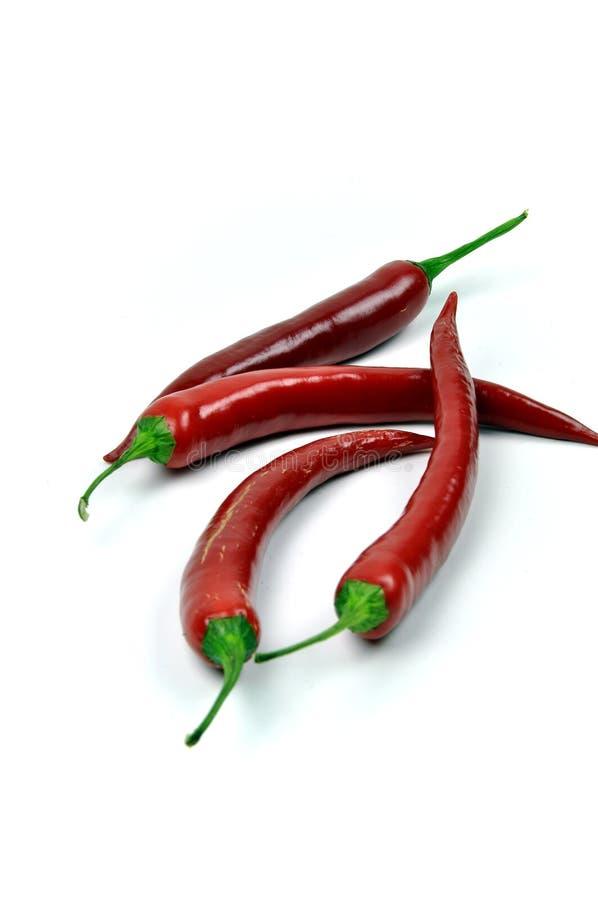 Chilis rojos calientes imagen de archivo libre de regalías