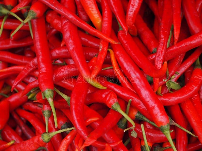 Chilis rouge au marché images libres de droits