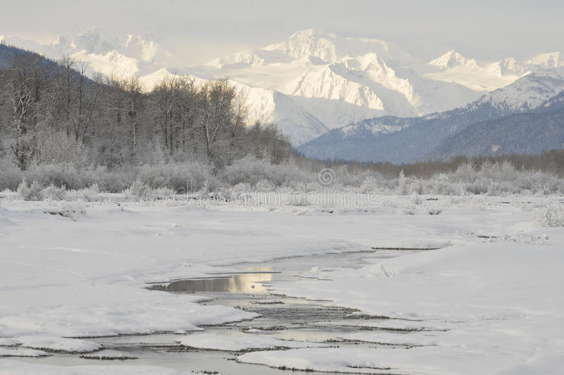 Chilkat-Fluss. stockfotos