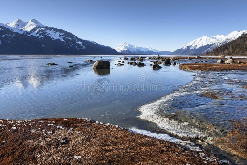 Chilkat-Mündung im Winter lizenzfreie stockfotografie