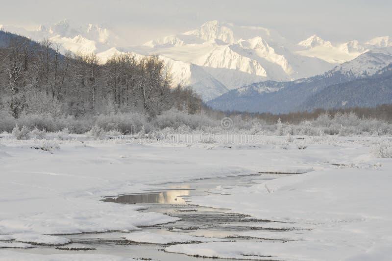 Chilkat rzeka. zdjęcia stock