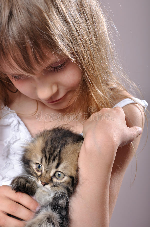 Chilld con un gattino persiano fotografia stock libera da diritti
